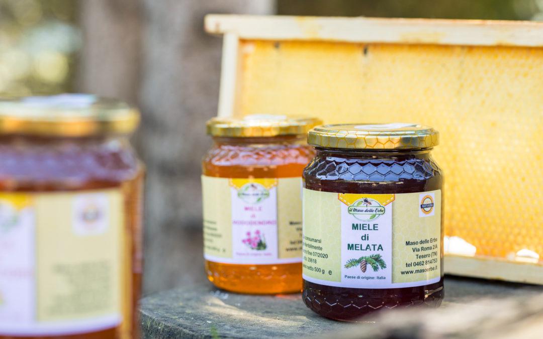I benefici del Miele nell'apiterapia